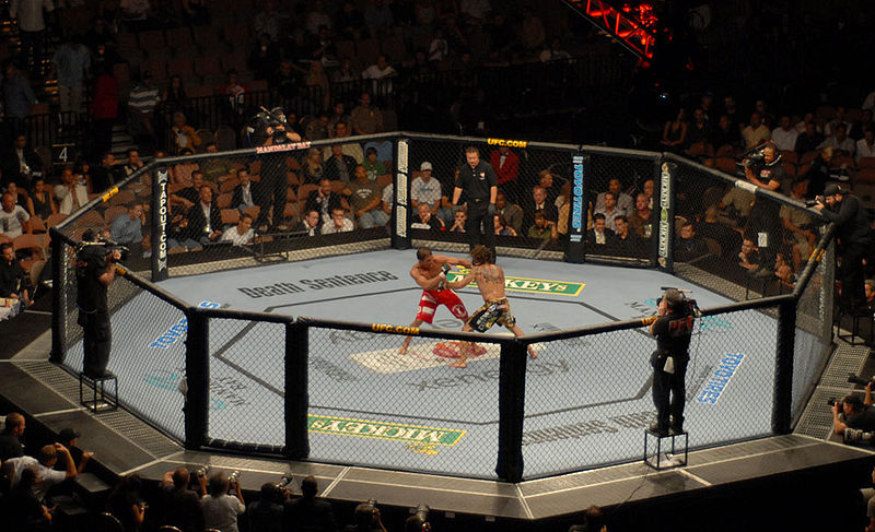"""Will the """"Octagon"""" survive its contract with Fox?"""