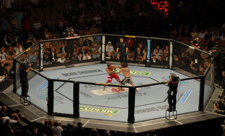 "Will the ""Octagon"" survive its contract with Fox?"