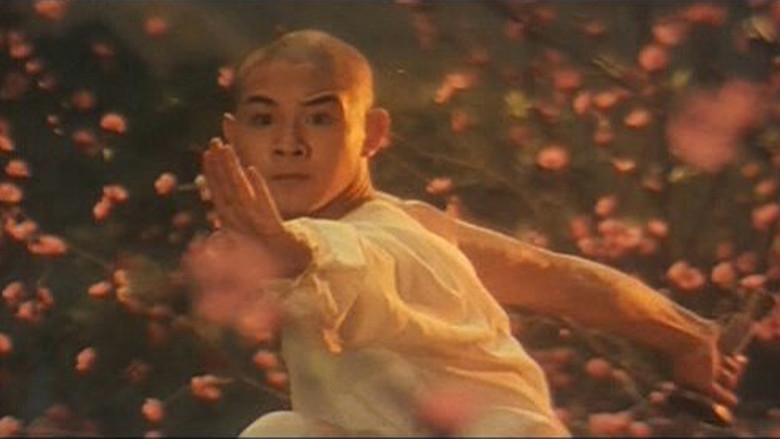 Essential Kung Fu Cinema (2): The Shaolin Temple – Kung Fu Tea