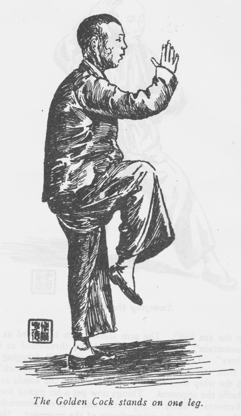 Taiji Boxer. Source: Burkhardt, 1953.