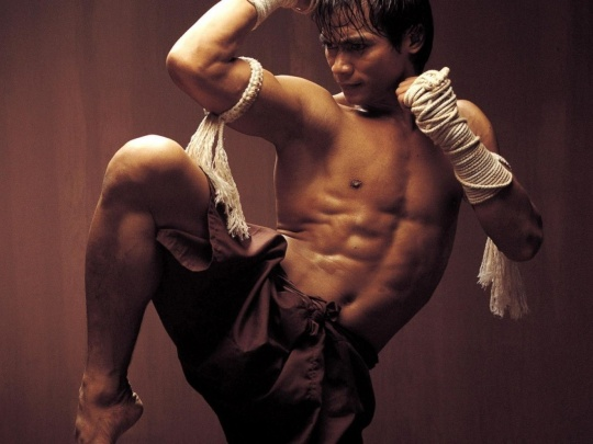"Tony Jaa in Ong Bak.  Jaa has recently agreed to replace Donnie Yen in the sequel to ""SPL."""