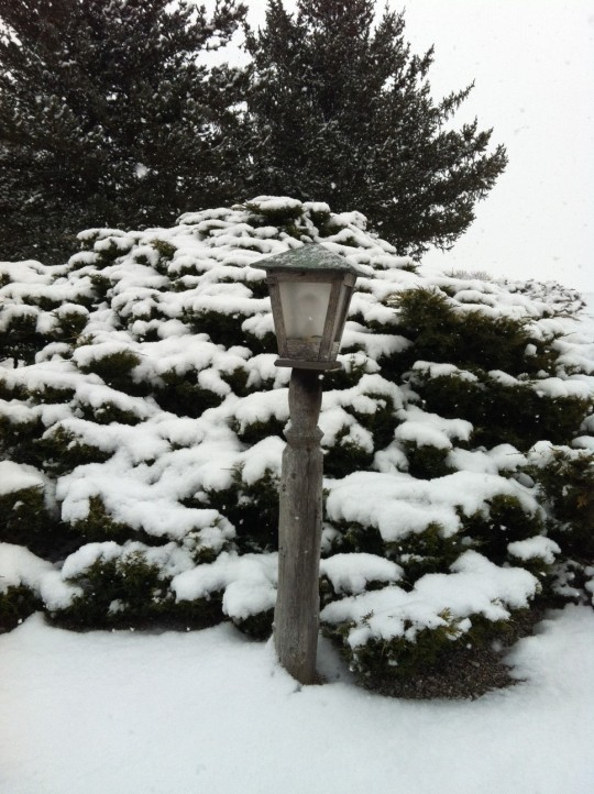 Christmas Eve snowfall in the Genesee Valley.  Source: Photo by Benjamin Judkins.  Authors Personal Collection.