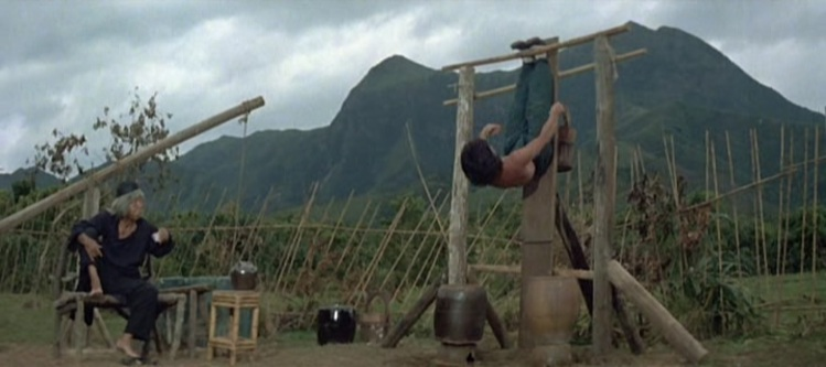 A scene from the epic (and very funny) training montage that helped to popularize Drunken Master with audiences.