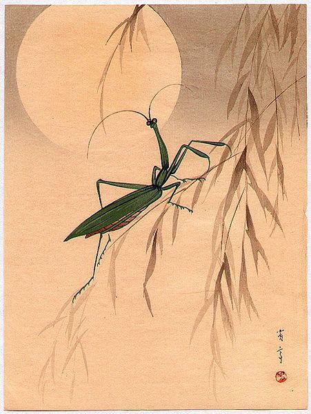 Mantis by Watanabe Shotei (1851-1918).  Source: Wikimedia.