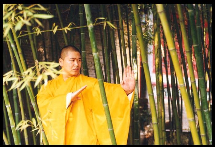 Shi Guolin.  Source: http://shaolin-overseas.org/index.html