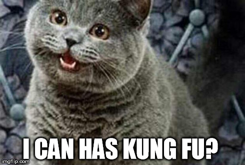 I can has Kung Fu