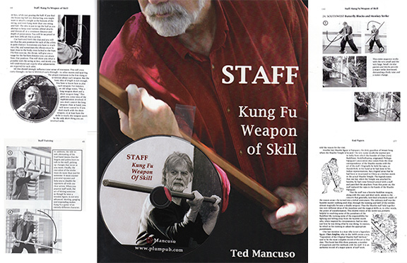 Staff.kung fu Weapon of skill