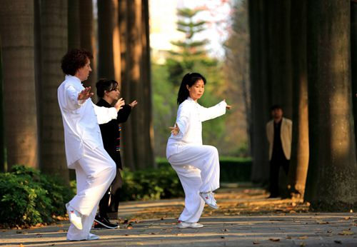 Taijiquan practitioners in a park. Source: http://english.cntv.cn