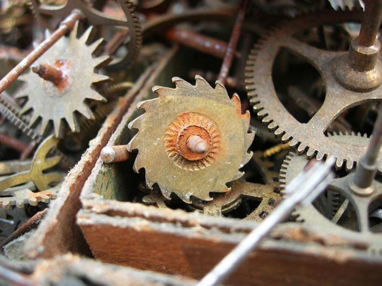 Deconstructed clock gears. Public Domain. Source: Wikimedia.