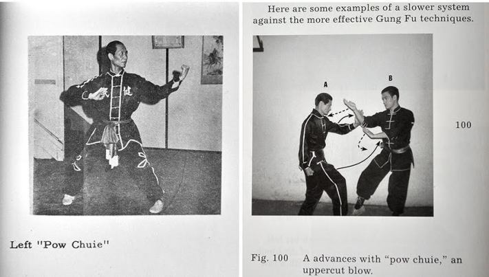 "In a later section of Chinese Gung Fu, Bruce and James give ""examples of a slower system against the more effective Gung Fu technique."" This shows Bruce dismantling James as he attempts specific techniques from TY Wong's first book."