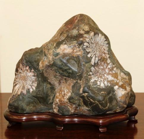 A Viewing Stone.  Source: Valavanis Bonsai Blog.