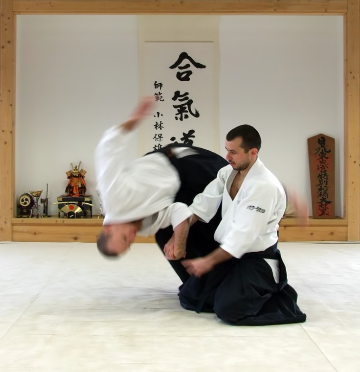 Aikido demonstration.  Photo by Magyar Balázs.  Source: Wikimedia.